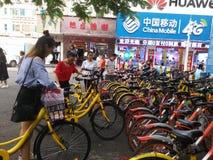 Делят велосипеды на улицах Шэньчжэня Стоковое Фото