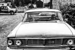 Джейсон & Adria Стоковая Фотография RF