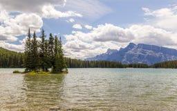 2 Джек в национальном парке Banff, Альберте, Канаде Стоковые Изображения RF