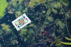 Джек клубов в пруде - концепции наркомании стоковое фото