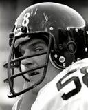 Джек Ламбер Питтсбург Steelers стоковое изображение rf