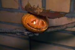 Джек-o-lanter на сухой ветви с кленовым листом Стоковые Изображения RF
