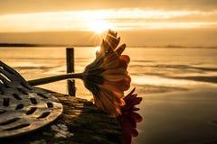Джемини на озере стоковая фотография rf