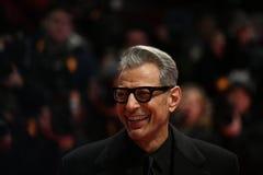 Джеф Goldblum во время Berlinale 2018 Стоковое Фото