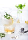 Джин, лимон, fizz розмаринового масла, коктеиль Стоковые Фотографии RF
