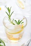 Джин, лимон, fizz розмаринового масла, коктеиль Стоковые Изображения RF