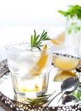 Джин, лимон, fizz розмаринового масла, коктеиль Стоковое Изображение RF