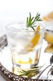 Джин, лимон, fizz розмаринового масла, коктеиль Стоковые Изображения