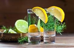 Джин с лимоном стоковое изображение