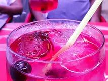 Джин с тоником с красными плодоовощами Стоковое Фото