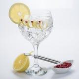 Джин с тоником с розовым извивом перца и лимона стоковые фотографии rf