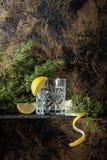 Джин, тоника с кусками лимона и sprig можжевельника стоковое изображение rf