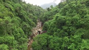Джунгли и водопад в Азии Южный Вьетнам акции видеоматериалы