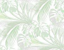 Джунгли предпосылка листьев тропических ладоней, изверг, столетник безшовно Изолировано на белизне иллюстрация иллюстрация вектора