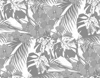 Джунгли Черно-белые листья тропических пальм, monstera, столетников и орхидей Падения росы, дождя безшовно Стоковое Изображение