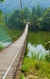 джунгли gorge фарфора моста longyuan Стоковое фото RF