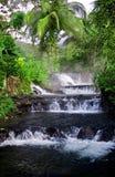 джунгли hotsprings стоковые изображения