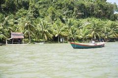 Джунгли Камбоджи Стоковые Фото