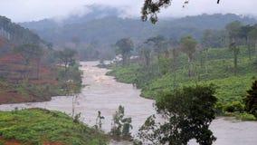 Джунгли Река вышесказанного акции видеоматериалы