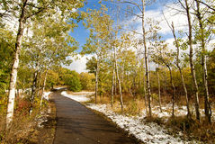 дзот изменяет парк холмов сезонный стоковые изображения rf