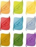 Дзэн природы листьев иллюстрации Стоковые Фотографии RF