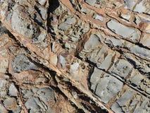 Диагональ текстуры береговой породы стоковые изображения