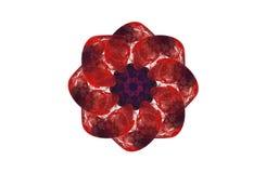 Диаграмма абстрактной агрессивной фрактали красная черная Стоковое фото RF