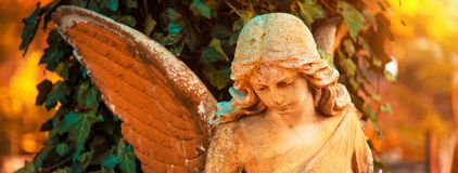Диаграмма ангела в золотом зареве Символ влюбленности, invisib Стоковое Изображение