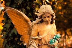 Диаграмма ангела в символ †«влюбленности, незримые силы, Стоковые Изображения