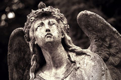 Диаграмма ангела Стоковое фото RF