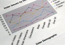 диаграмма выдает избирателя Стоковые Изображения
