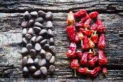 Диаграмма гаек сосны и красного перца сухих на деревянном Стоковые Изображения