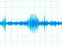 диаграмма землетрясения Стоковые Изображения