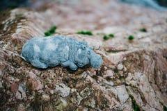 Диаграмма камня Hippohippopotamus ослабляя Диаграмма сделанная Inkerm Стоковое фото RF