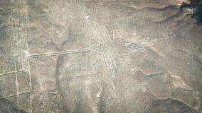 Диаграмма колибри как замечено в Nasca выравнивается, Nazca, Перу Стоковые Изображения RF