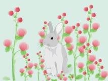Диаграмма кролика иллюстрация штока