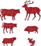 Диаграмма мяса вырезывания Стоковое фото RF