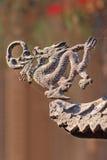 Диаграмма на крыше виска Taoist, Пекин дракона, Китай Стоковые Фотографии RF