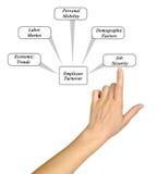 Диаграмма оборачиваемости работника Стоковое Изображение RF