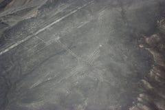 Диаграмма птицы на линиях увиденных от самолета, линиях Nazca Nazca, в Стоковое фото RF