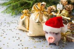 Диаграмма свинья в шляпе Санта Клауса с сумками подарков на предпосылке рождественских елок деревянное украшений рождества эколог стоковое фото rf