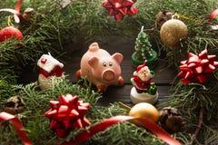 Диаграмма с ветвями ели, simbol свиньи 2019 Новых Годов стоковое фото rf