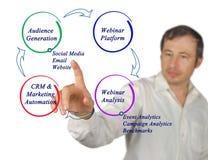 Диаграмма цикла маркетинга Стоковое Изображение RF