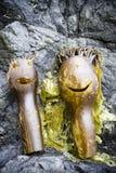 Диаграмма человека морской водоросли келпа стоковые изображения rf