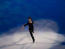 диаграмма lambiel олимпийский катаясь на коньках stephane торжественного Стоковая Фотография