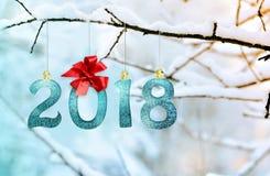 Диаграммы 2018, вися на покрытой снег ветви в парке счастливое Новый Год Стоковые Изображения