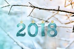 Диаграммы 2018, вися на покрытой снег ветви в парке счастливое Новый Год Стоковые Изображения RF