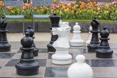 Диаграммы шахмат улицы черно-белые на доске Стоковая Фотография