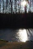 Диаманты на пруде Стоковая Фотография