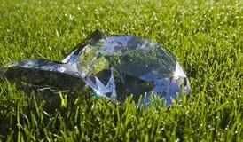 диаманты свежие Стоковые Фото
